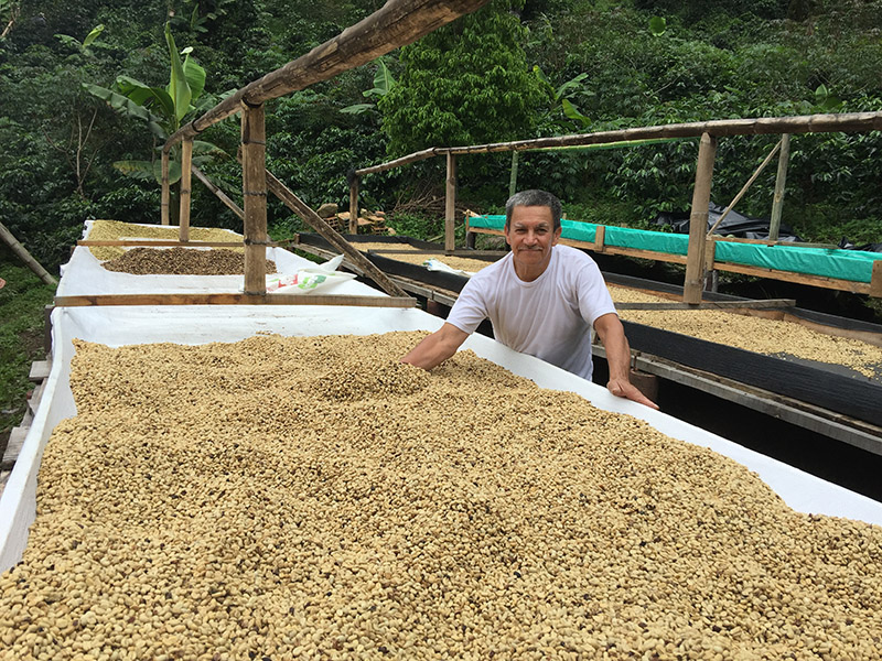 The beans are sun-dried by spreading them on drying tables, where they are turned regularly. The dried beans are known as parchment coffee, and are stored in jute bags until they are ready for milling.